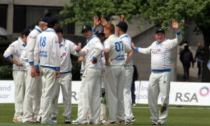 Leinster Lighting celebrate a wicket (courtesy of cricketeurope.net)